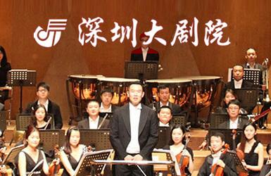 深圳大剧院案例图片