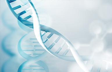 亚洲合成生物学协会案例图片